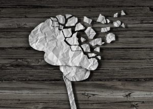 paper brain vanishing